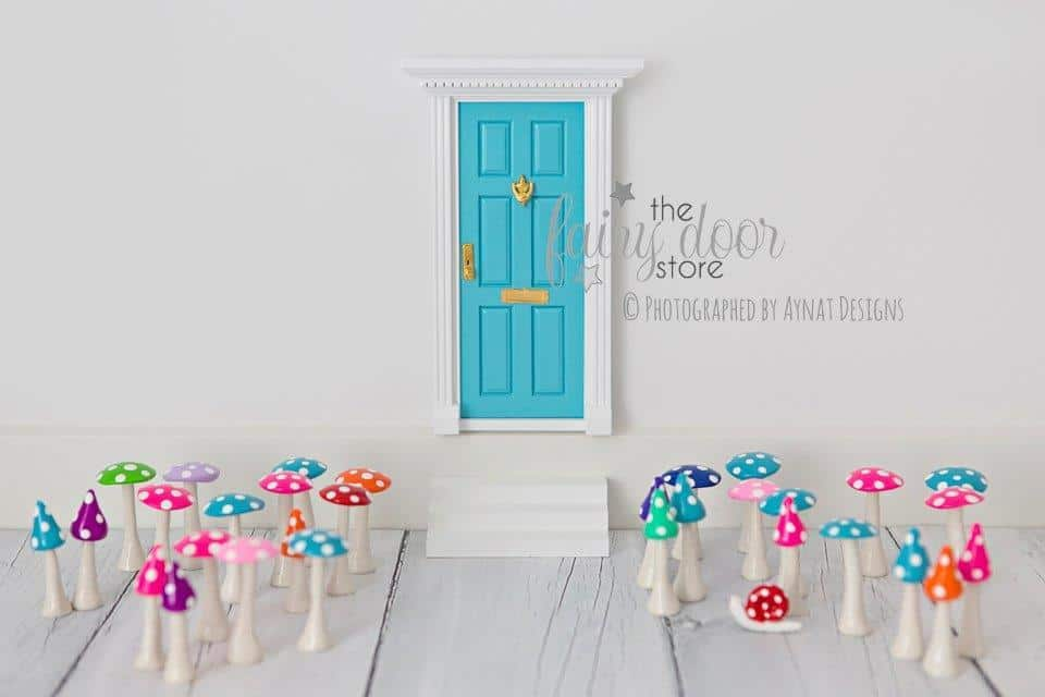 Fairy door store fairy doors little bit lush for The little fairy door